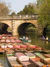 Punts at Magdalen Bridge